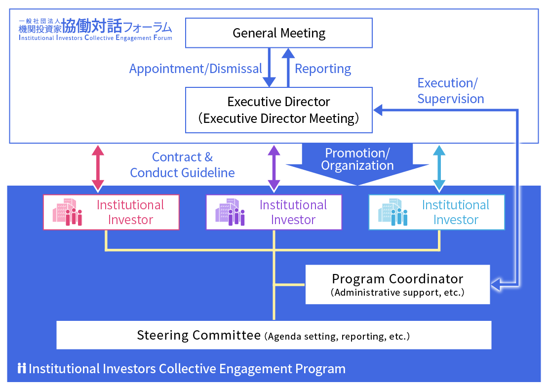 IICEF Organizational Structure